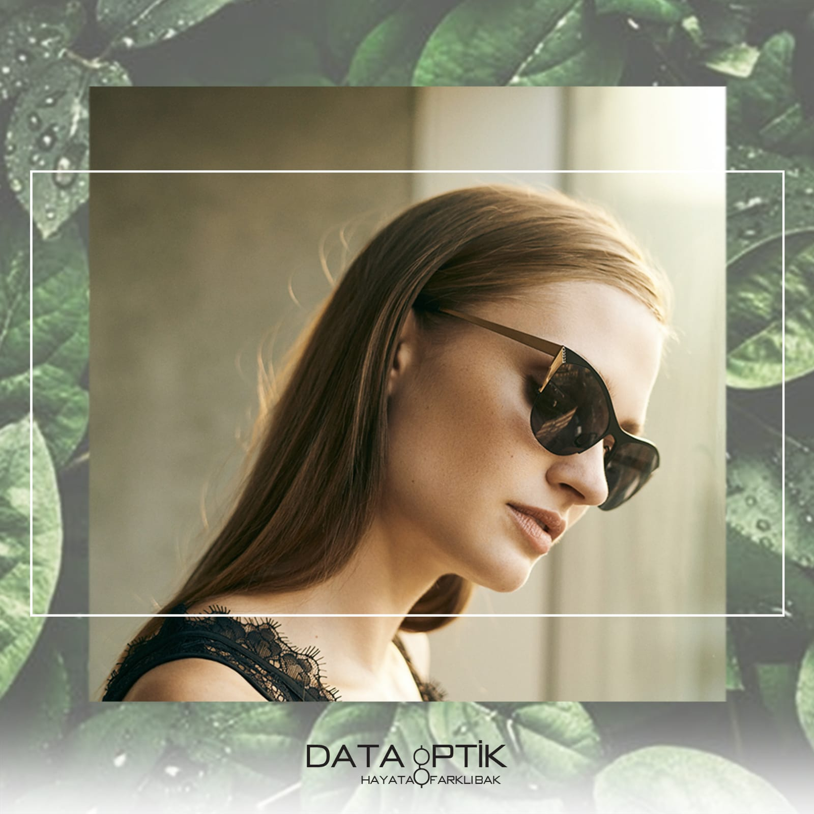 Data Optik